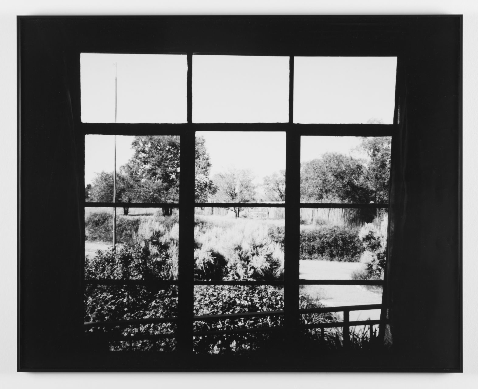 Andy_Mattern-Window_Gazes-Casa_Sutherland-NW